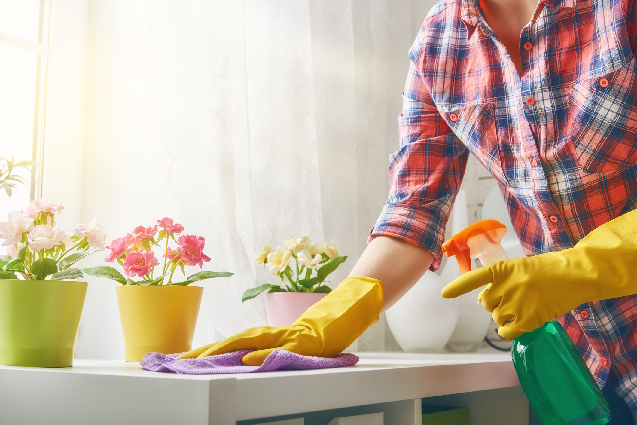 Spring Forward with Spring Cleaning